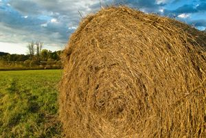 Haybale and Approaching Storm