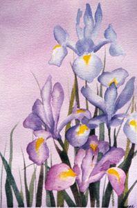 Four Irises