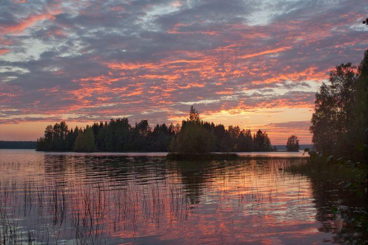 Sunset 2 - Art KalleCat