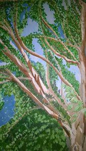 A sunlit tree