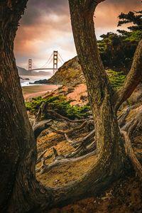 Window to the Golden Gate Bridge