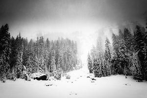 Oregon Blizzard