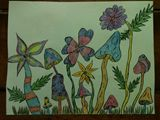 shrooms ink and colored pencil