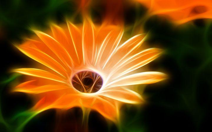 Flower - Croag
