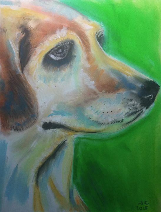 Experient Beagle - James Craig