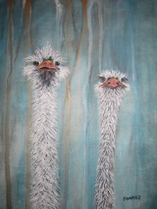 Ostrich I - Paintings by BWARNER