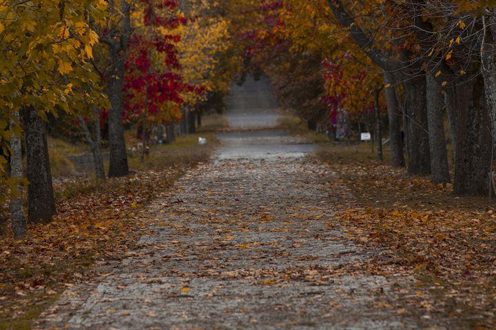Autumn - Ugur Ugurlu