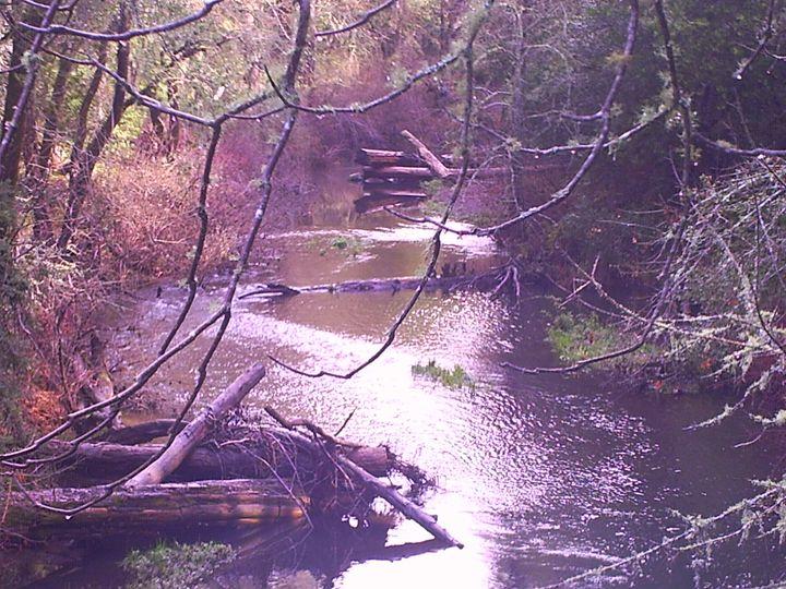 Creekside Shimmer - Galaxy9 Creations