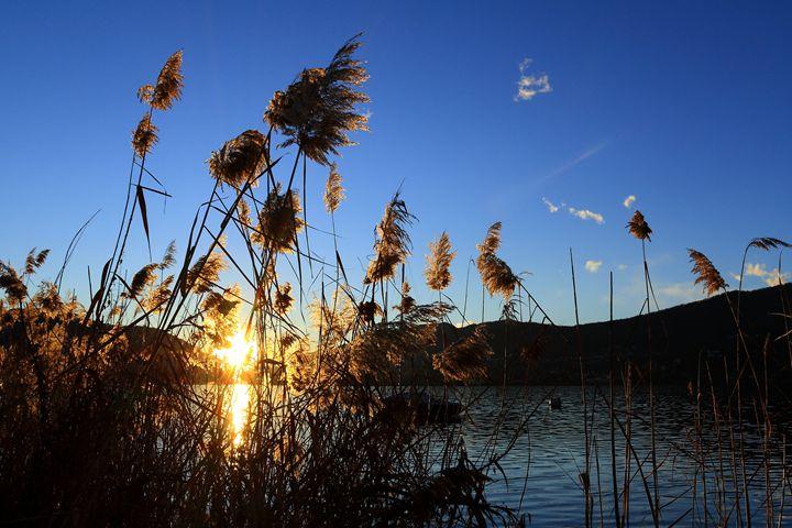 sunset at lake - photoel