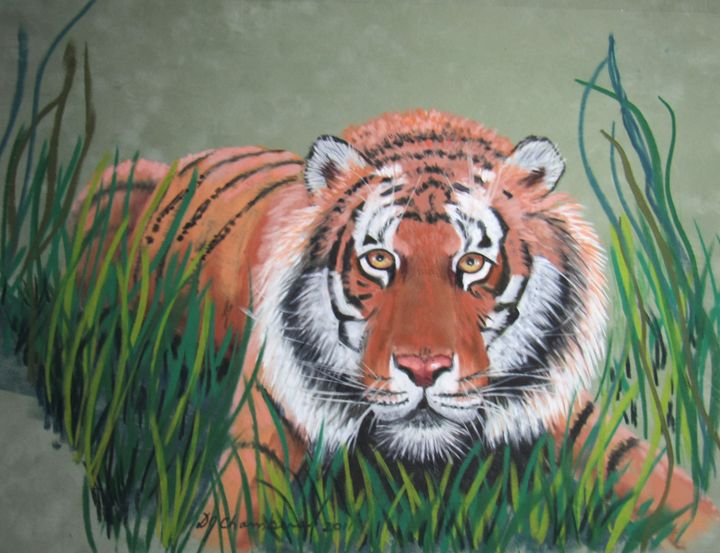 TIGER IN THE GRASS - D Chambers Art