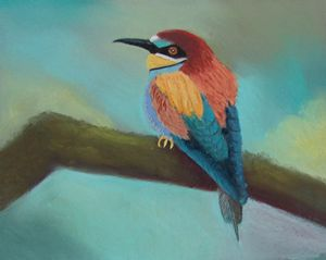 BEE EATER  MULTICOLOR
