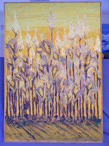 Evening corn