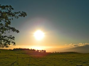 Sunset and A Meadow