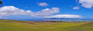 Wide Open Hills & Blue Sky - Maui