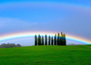 Low Profile Rainbow