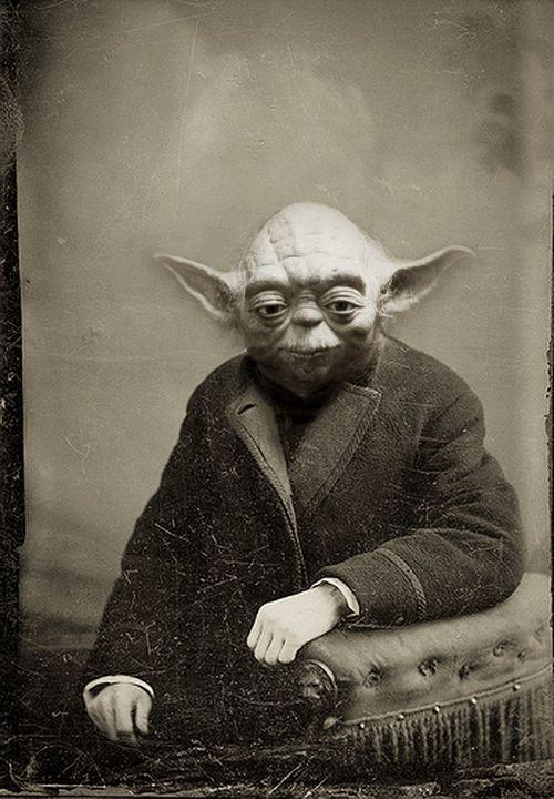 old Yoda - Tony Leone