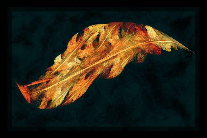 Iterations of Nature - Rybird