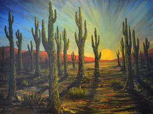 Desert Sunset on Saguaro Cacti