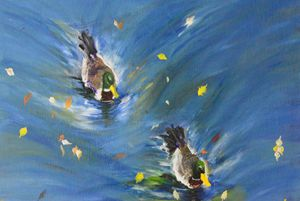 ducks and the water