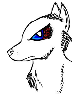 Ruff wolf