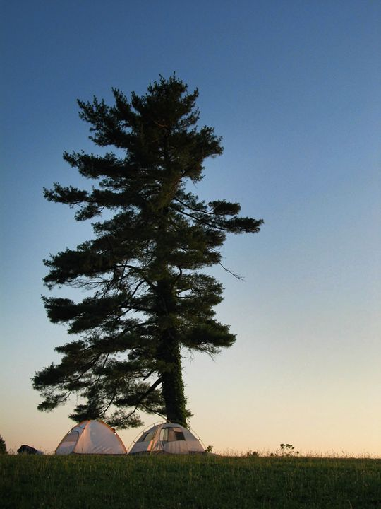 Otie's camping - Frank and Calla Bell Scholarship Foundation