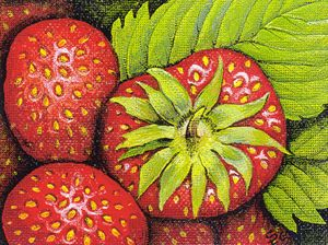 Strawberries - Pia's Contemporary Art Collection