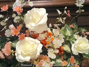 Photo White roses