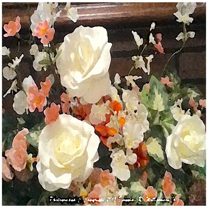 Paint Brush Design Of White Roses - White Flower Guys