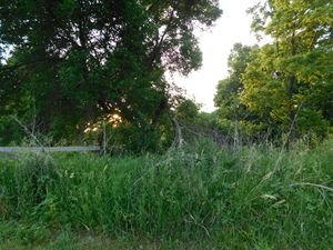 Edge of Iowa Farm