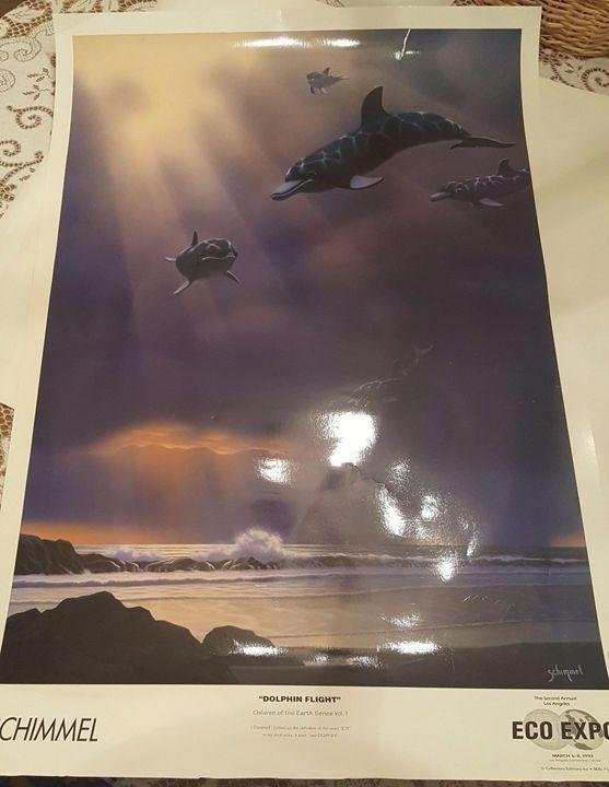 """""""Dolphin Flight"""" - Disabled Veterans Store"""