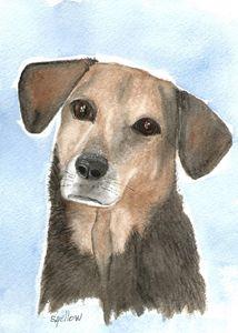 Beautiful Beagle - WatercolorsbySandy