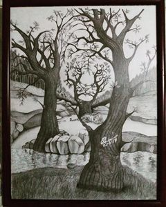 Forest Illusion