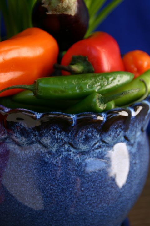 Cobalt blue pot of colorful chilies - Sue Rode Photography