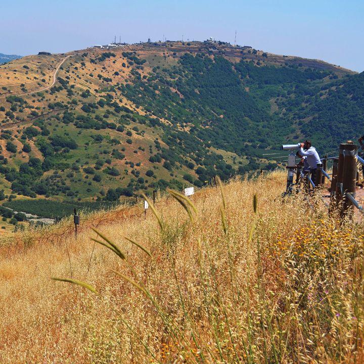 Golan Heights - Amanda Chaplin