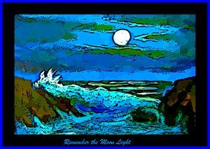 Moonlit Seascape Poster