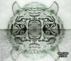 digital water tigre