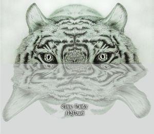 Tigre shadow