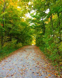 Autumn in Canada
