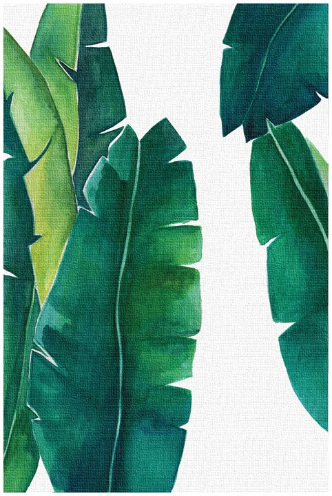 Banana leaf print, Botanical Print - PDFDecor