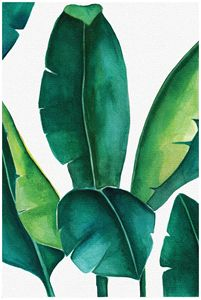 Banana leaf print, Botanical Print