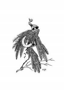 dead bird, stick and worm