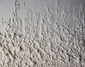 White Foam #384