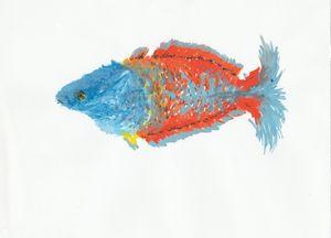 Boeseman's rainbowfish painting