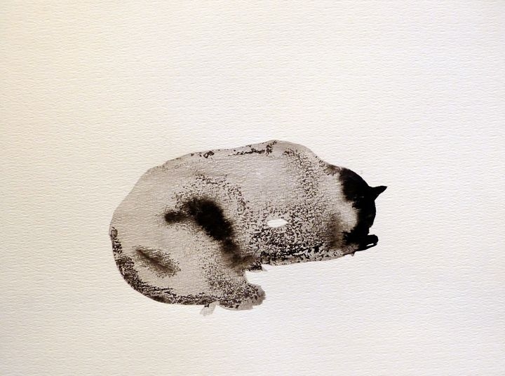 Sleeping Cat - Frederic Belaubre