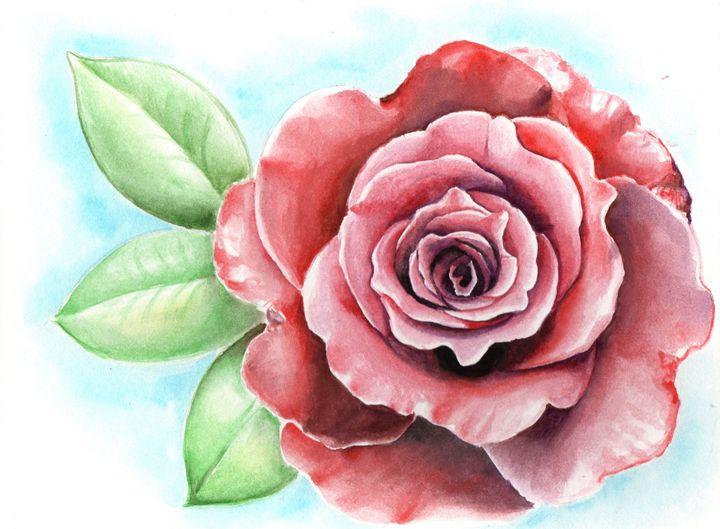 Rose - MIc'z