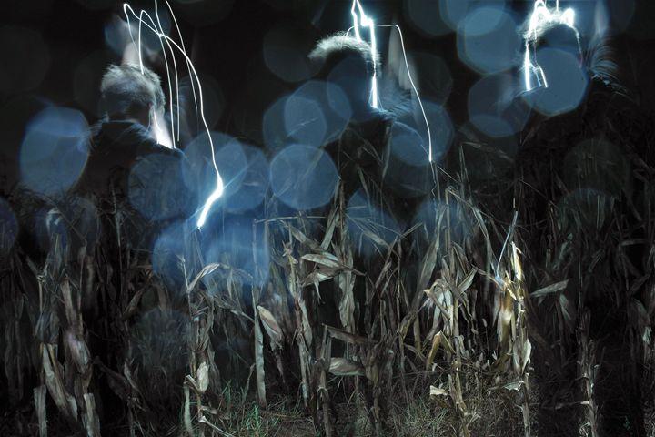 Spirits at Play - Phosphorescence