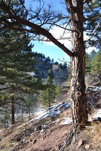 Beautiful Boulder