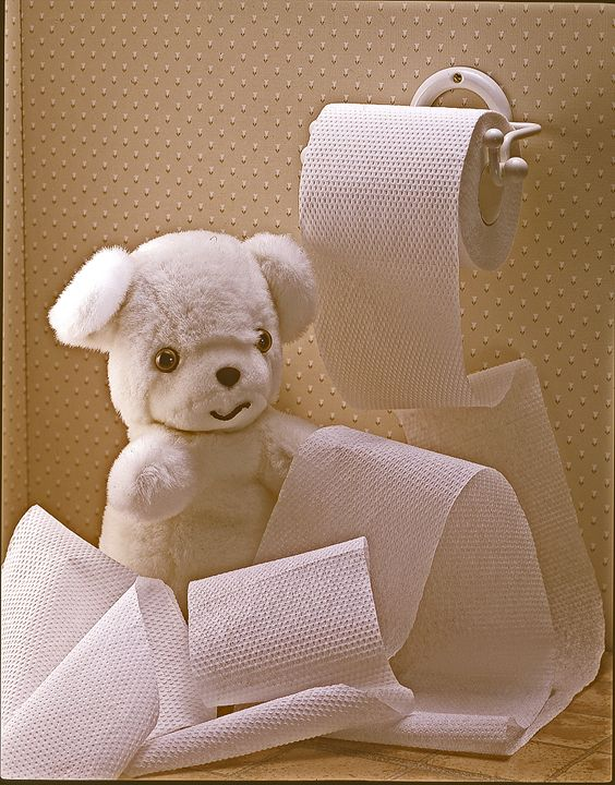 Toilet  Paper Roll - holyhollys