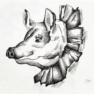 Pig in Ruffles