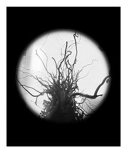 Sculpture - Pinhole Camera